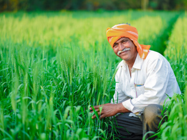 NEW ORDINANCES, 2020 (In the Agriculture & Allied Sector)